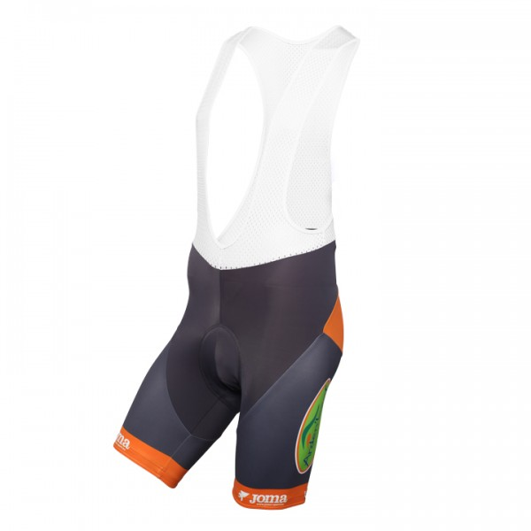 COLOR CODE-AQUALITY PROTECT kurze Trägerhose 2016 - Profi-Radsport-Team